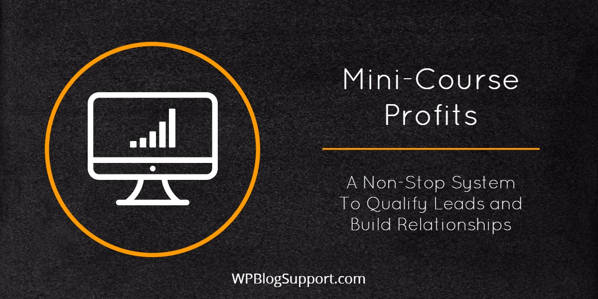 Mini-Course Profits (1)